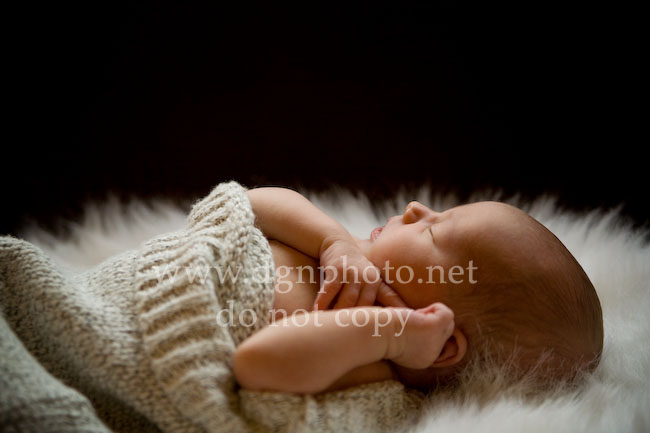 20090512-newborn-photographer-2